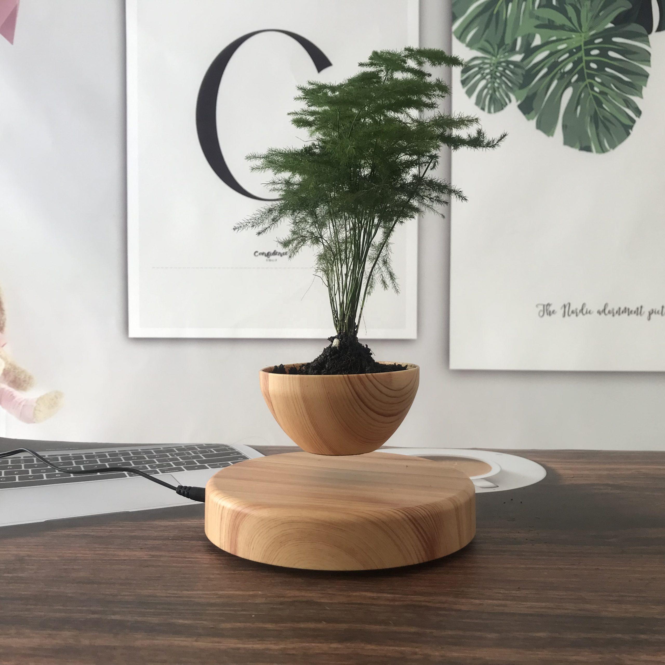 plantenpot 1