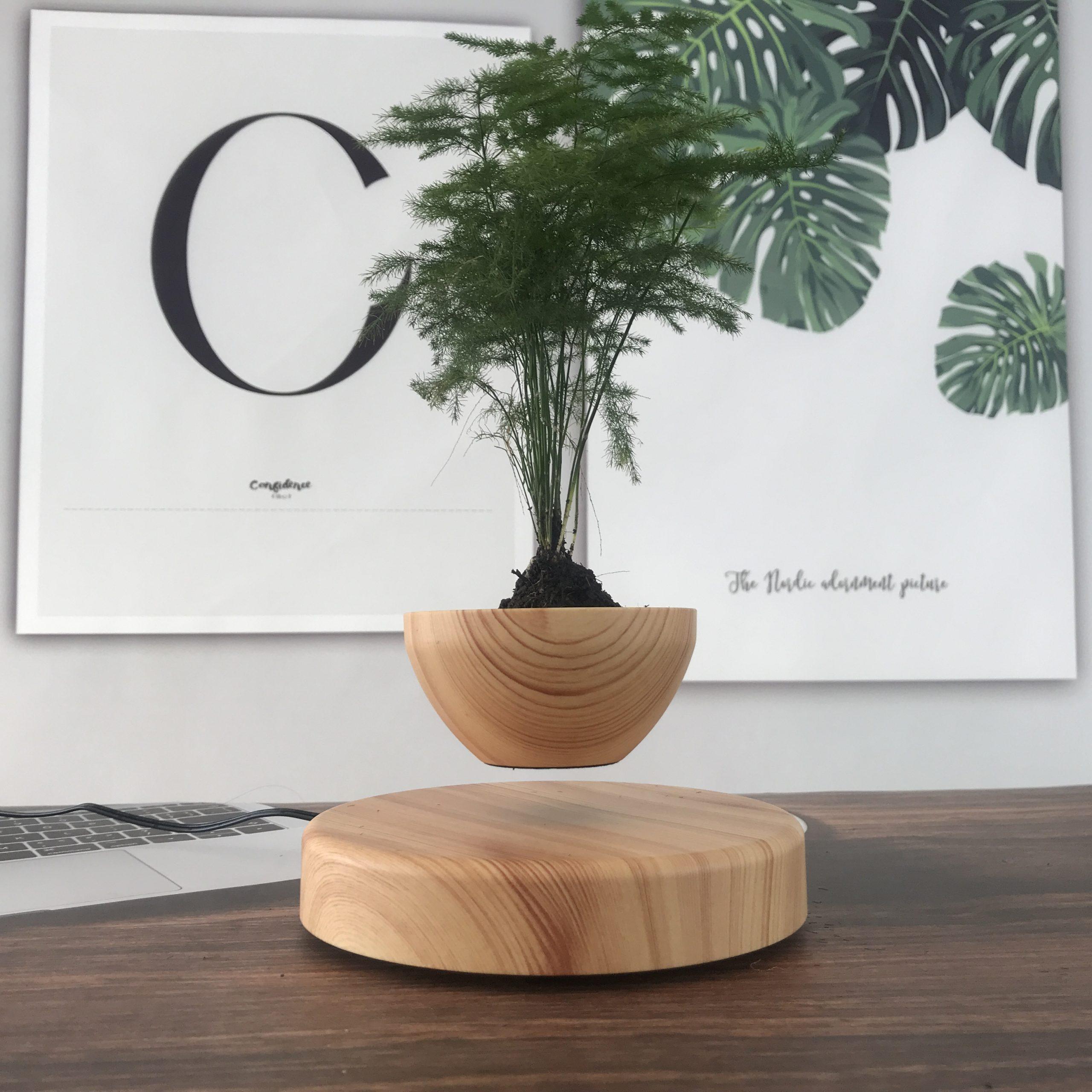 plantenpot 6